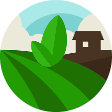 Southern Hospitality Kibbutz (FUTURE FARM)
