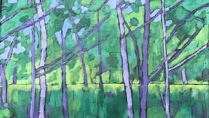 Allison's Trees