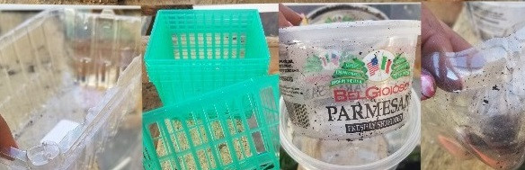 Various plastic reusable containers.
