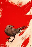Red Blackbird