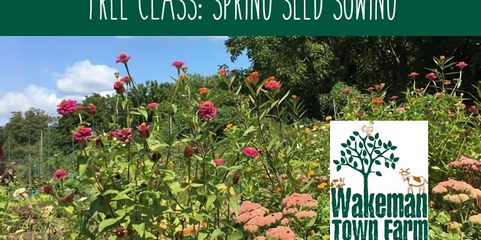 SPRING SEED SOWING: A POLLINATOR PATHWAYS EVENT