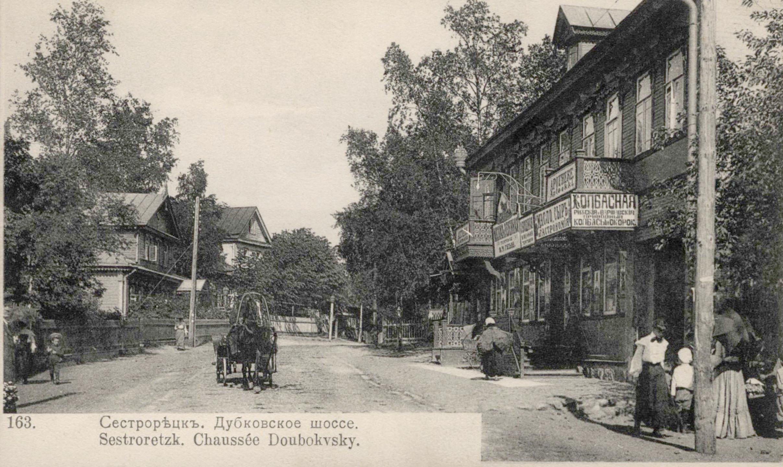Сестрорецк. Дубковское шоссе.