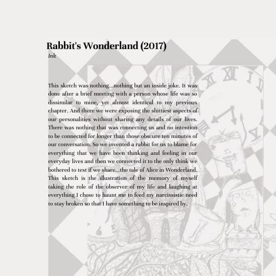 Rabbit's Wonderland (2017) Description