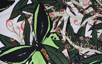 butterfly good.jpg
