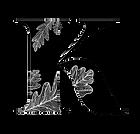 logo K .png