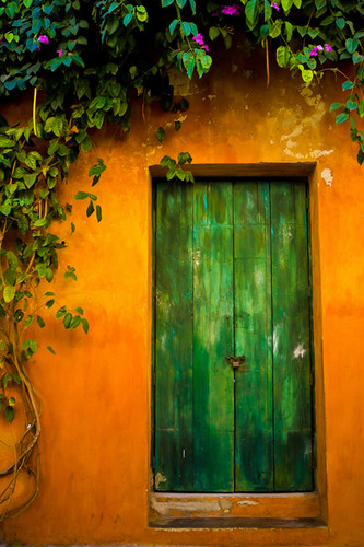 Doorway with foliage
