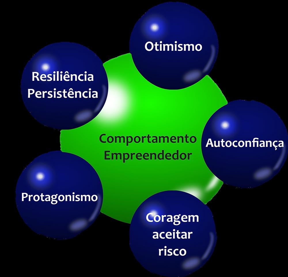 O comportamento empreendedor deve ter 5 aspectos: Otimismo, Autoconfiança, Coragem de assumir riscos, Protagonismo e Resiliência e Persistência.
