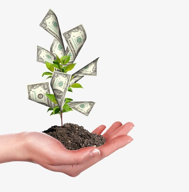 Dinheiro não dá em árvore!