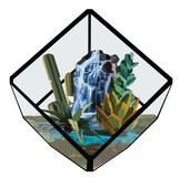 Hidden Oasis Terrarium