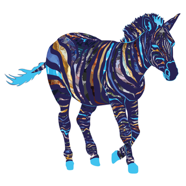 Cosmic Space Zebra