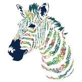 Collagen Zebra