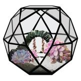 Secret Garden Terrarium