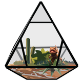 Desert Terrarium