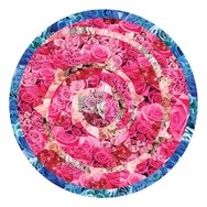 Rose Shield Collage