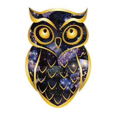 Cosmic Night Owl