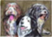Doris,Teun&Nol(v2)_EmmaBijloos2019.jpg