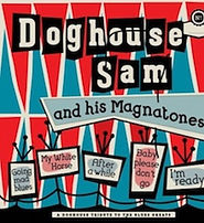 Doghouse Sam vinyl