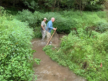 Pa. Trout Unlimited volunteers improve, protect waterways from GoErie