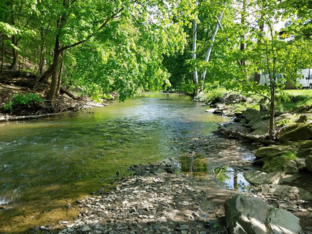 Pine Creek Delayed Harvest Area stocked yesterday