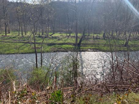 Buffalo Creek Fishing Report April 20th, 2020
