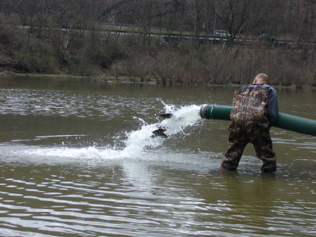 North Park Lake was stocked on March 8th APSC helped!