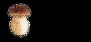 Syötteen sieni ja yrtti logo