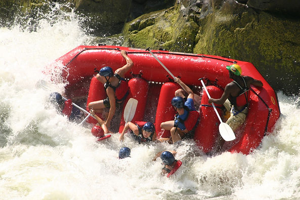 Victoria Falls Actvities Centre organzises Tours Activities such as white water rafting on Zambezi River, Chobe Safaris, helicopter flights, devil`s pool, elephant ride, lion walk, bungee jump, sun set cruise, canoeing, gorge swing & accomodation