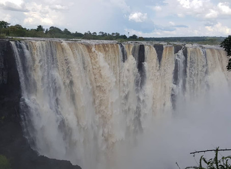 Visit the Victoria Falls, the largest curtain of falling water. Great photographic opportunities...