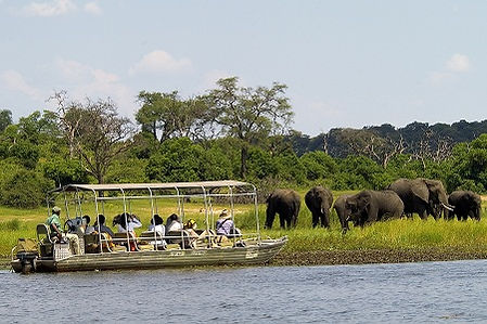 Safari on the Chobe River near Victoria Falls provided Shockwave Adventures