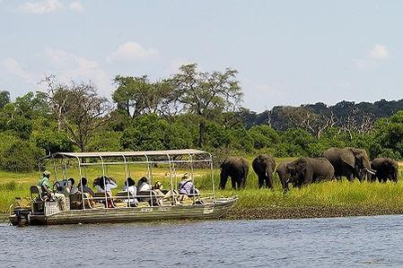 Safari on the Chobe River near Victoria Falls provided Shockwave Adventures