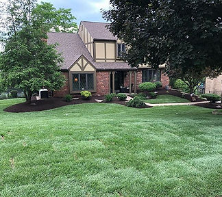 Love how this one turned out. New lawn.