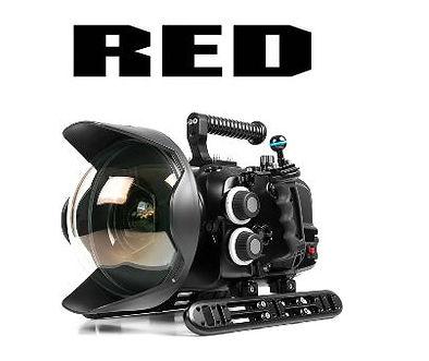Na-Red Komodo02.JPG