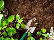 gardening.jpeg