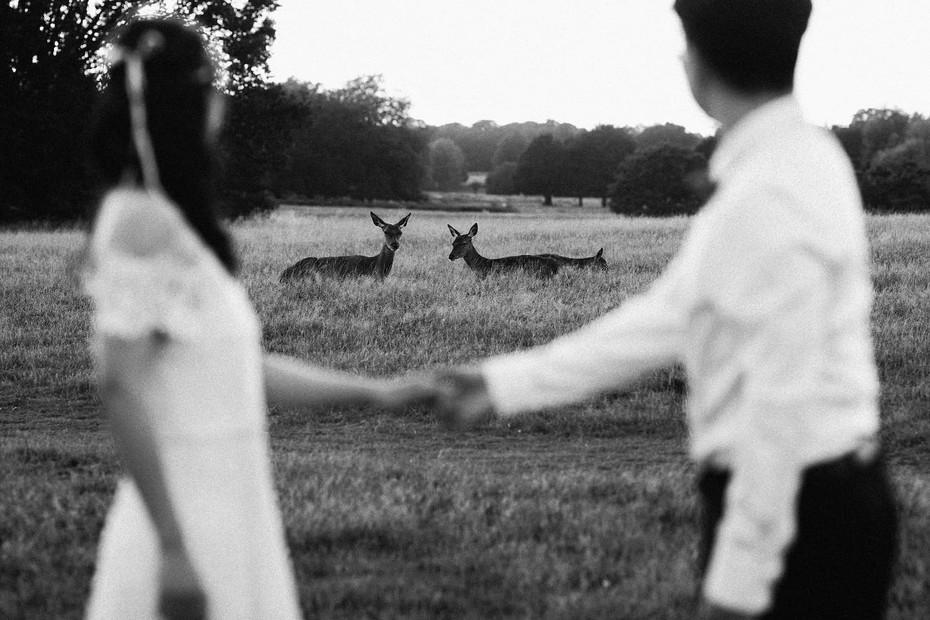 Richmond Park Surrey Wedding Photography