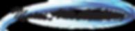 MAA Black Type Logo Transparent (2).png