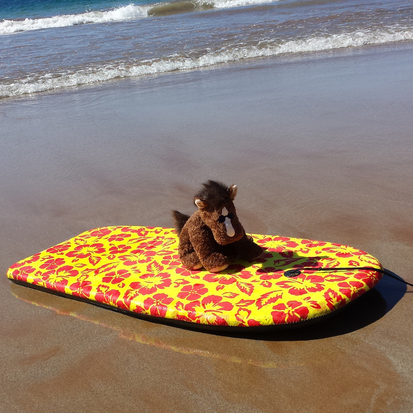 GIL on the Boogie Board