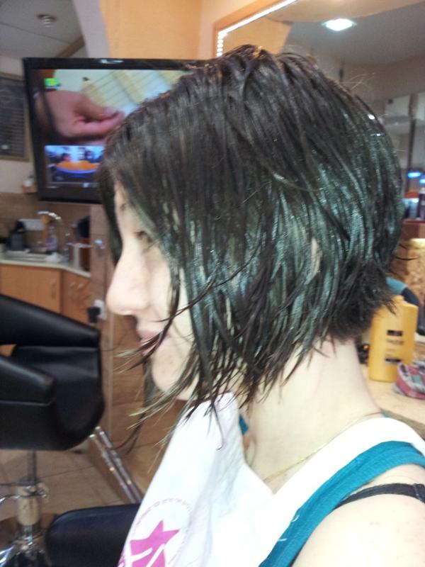 תרומת שיער 2014