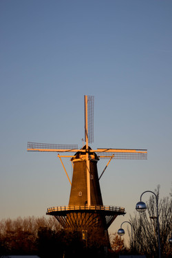 Molen van Leiden