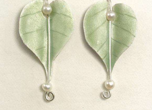 Leaf Drops_Sage