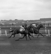 Hanover Handicap (Aqueduct), June 1932. Mark Garnev up on The Nut, owner Gene Boswick up on Blind Bowboy.  Courtesy of Keeneland/Cook.  Garanev was inducted into the Racing Hall of Fame in 1969.