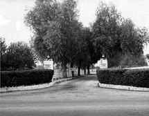 Reseda Blvd. entrance to Northridge Farms.  Photo by Bob Hopper 1951