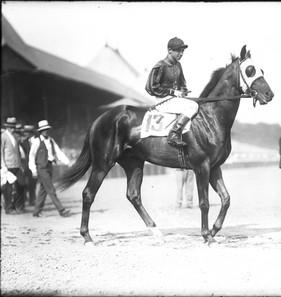 Saxon at Saratoga with G. Ellis up.  Photo courtesy of Keeneland/Cook,  Keeneland Library - Lexington, Kentucky.  c. 1926 or 1927