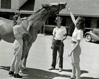Barbara Stanwyck and Marion Marx feeding horse sugar  Motion Picture Magazine Feb 1939