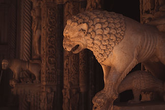 lion-radovan-portal.jpg