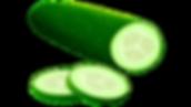 Cucumber Vector.png