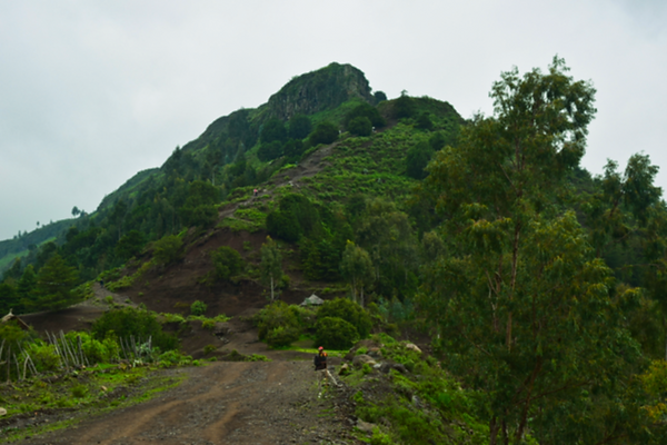 Region Amhara.png