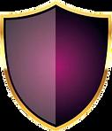 shield vector.png