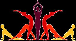 yoga vector.png