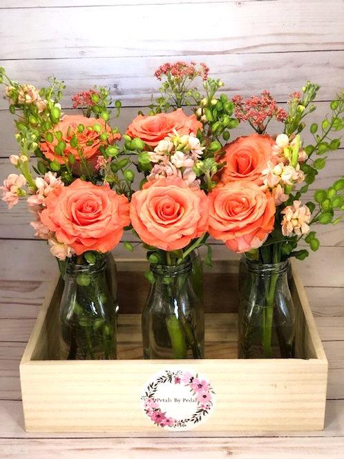 Flower Garden in a Box