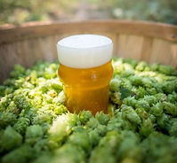 hops_brewers_association-1.jpg